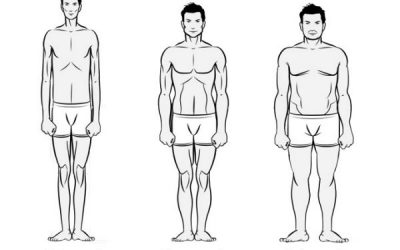 Body Types & Weight Loss